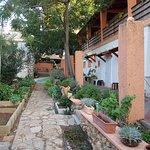 Safed Inn Foto