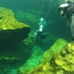 Diving Case Cenote