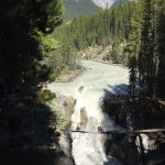 Foto di Sunwapta Falls Rocky Mountain Lodge