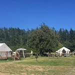 Tent-cabin sites (way to close together)