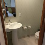Toilet area with sink