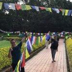 Lumbini Buddha Garden resmi