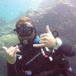 Seastar Cruises Reef Day Trips Foto