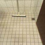 Soaking wet bathroom with squeegee.
