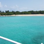 Photo de East Island Excursions
