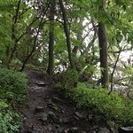 steep trail down to Lake Winnebago