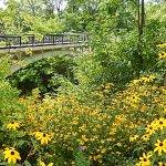 A bridge in Lake Park.
