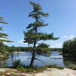 Georgian Bay Islands National Park of Canada Picture