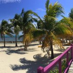 Panorama photograph of The Coconut Café in San Pedro, Ambergris Caye, Belize