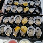 The best oysters in Tasmania