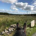 Photo of Slieve Aughty Riding Centre