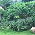 Photo de Ananta Spa & Resorts