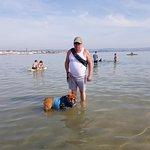 Dog friendly beach at Weymouth