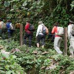 Photo of Santa Lucia Cloud Forest