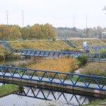 pont sur le plan d'eau