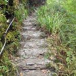 Steep uneven steps