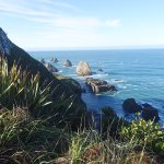 Nugget Point!