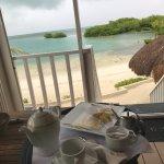 Bilde fra Royal Palm Island Resort