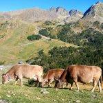 Foto de Grau Roig Andorra Boutique Hotel & Spa