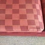Faded & worn cushions.