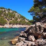 Cala Murta (Formentor)