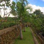 Photo of Aye Yar River View Resort
