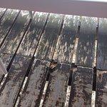 terrasse endommagée