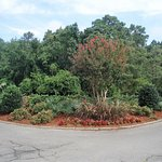 Lanscaping near golf course