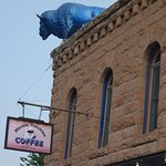 Sign and blue buffalo.