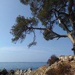 Iles de Lerins Foto