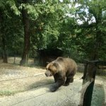 Photo of Giardino Zoologico di Pistoia