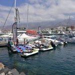 Foto de MAXICAT catamaran