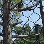 Photo of Turtle Back Zoo