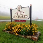 Apex Orchards Foto