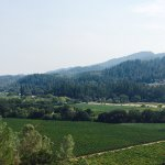 Fantastic Merlot, scenic views and $.54 tax on 3 bottles of wine (~$84). If you can take a bus t