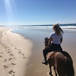 Beach and forrest rides, both a very unique experience! 🏇🏽