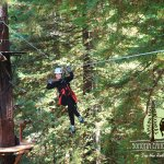 Photo de Sonoma Canopy Tours