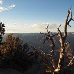 Photo of Hopi Point