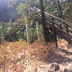 Swinging bridge at Kootenai falls