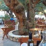Damnoni Taverna