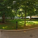 Lovely mature trees and grass in the centre of London