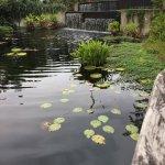 Photo de Naples Botanical Garden