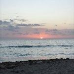 Photo de Courtyard Hutchinson Island Oceanside/Jensen Beach