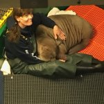 Baby Walrus rescued at 2 weeks at Sealife Center
