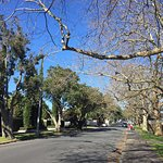 Parnell, Auckland - NZ