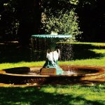 The fountain in the back yard area