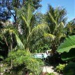Photo of Genesis Eco-Oasis