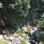 Photo of Gorges du Loup
