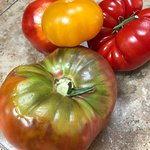 Luscious Heirloom tomatoes from the nearby Farmer's Market in Crested Butte (20 min drive north)