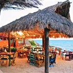 Our Beachfront Palapa dining